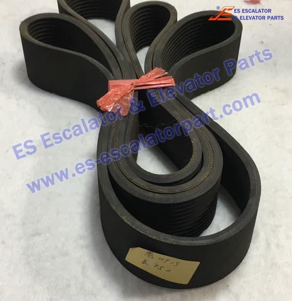 OTIS GOA260AF1 handrail drive belt